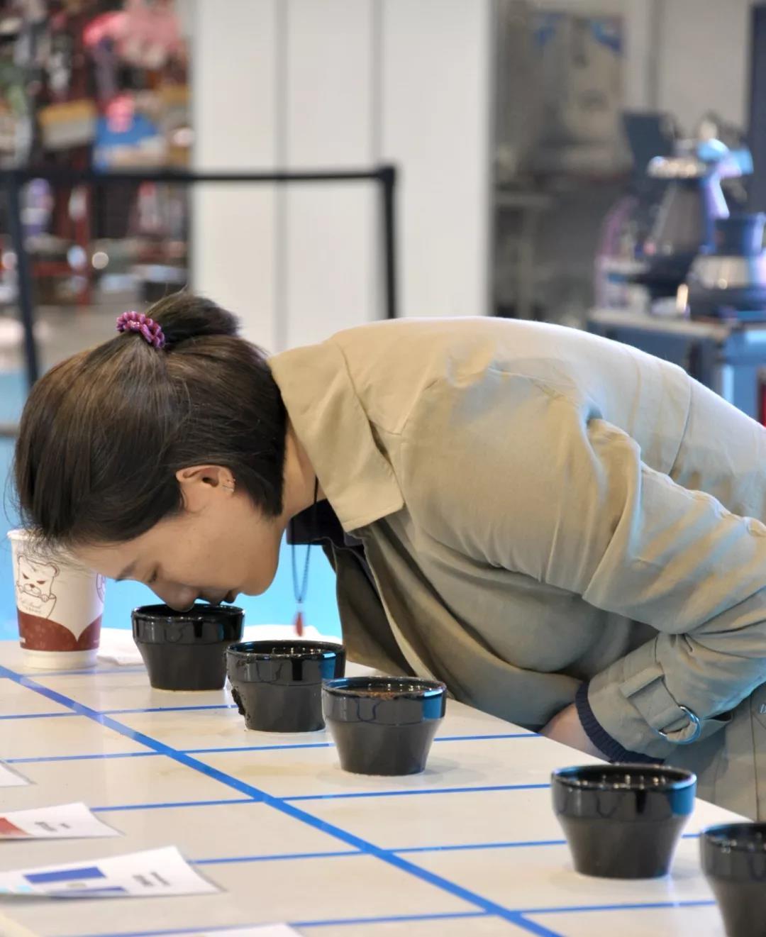 咖啡赛事丨2019咖啡杯测大师热身赛一选手招募-咖报